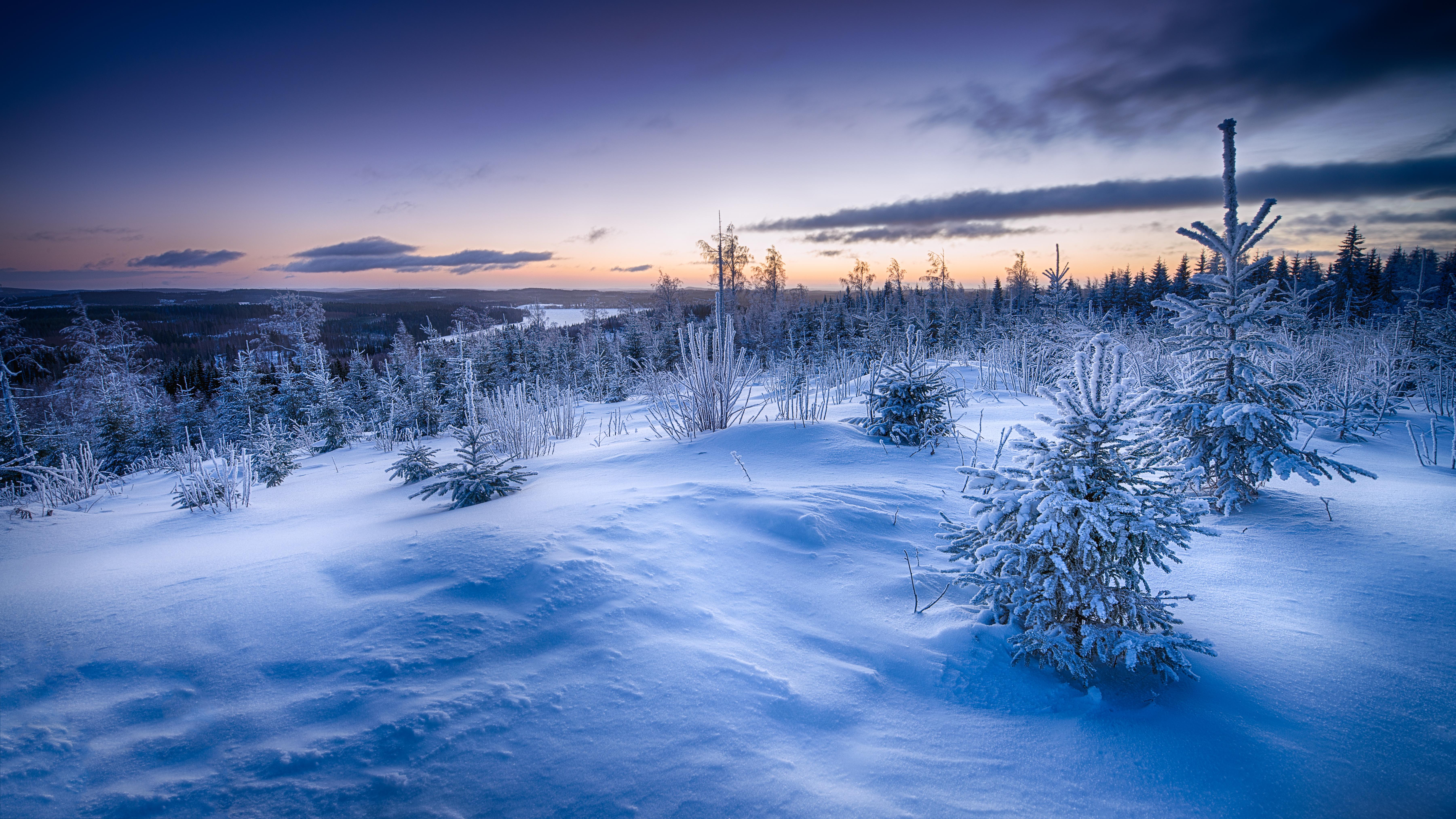 Обои Зимние На Телефон HD