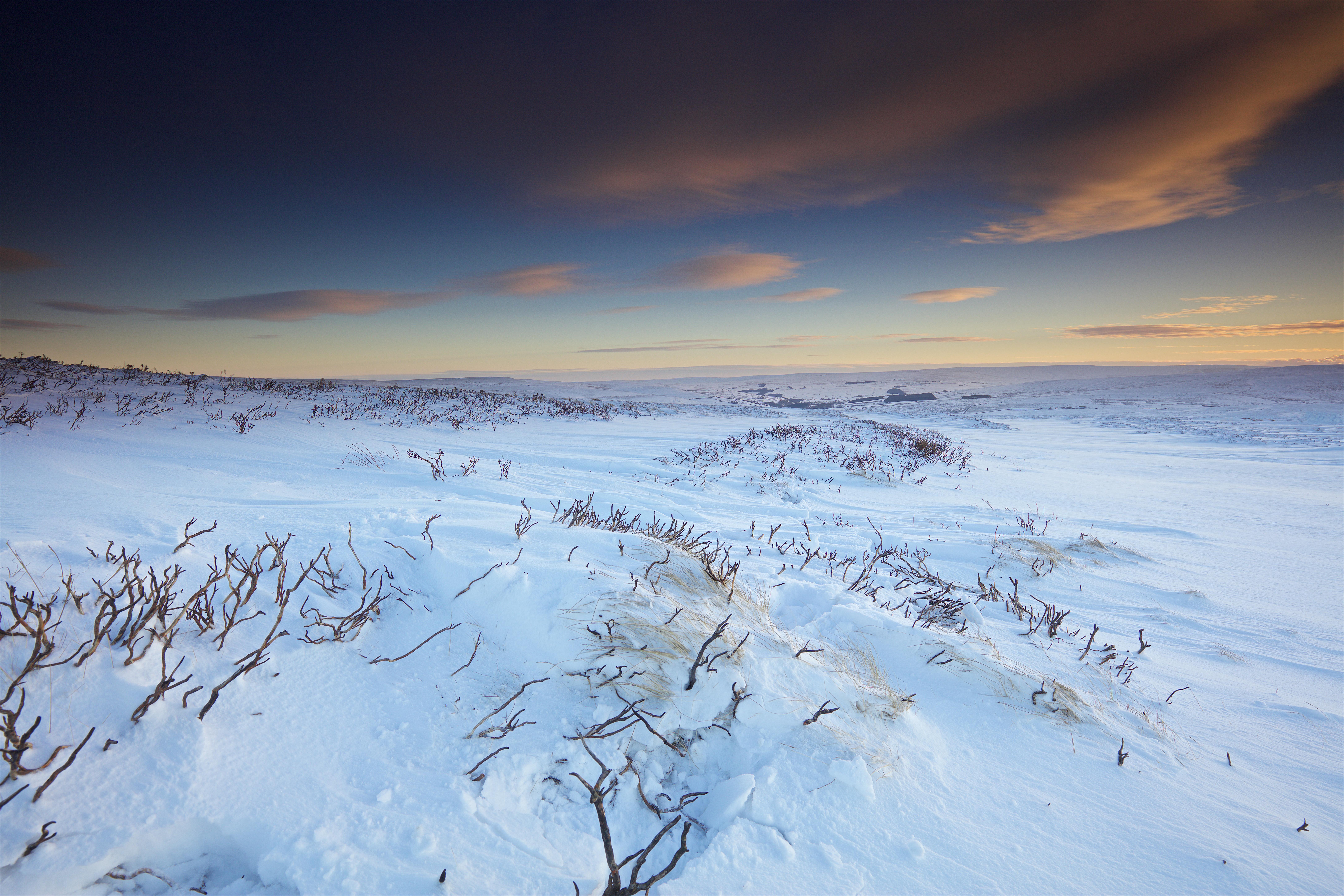 остался картинки к суровой зиме тундры всегда