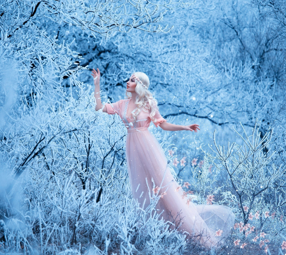 Приятных, красавица зима картинки красивые
