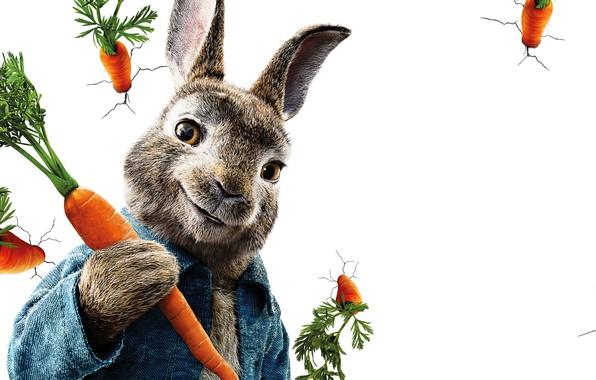 Картинка трещины, стена, мультфильм, кролик, белый фон, постер, морковь, Peter Rabbit, Приключения Кролика Питера