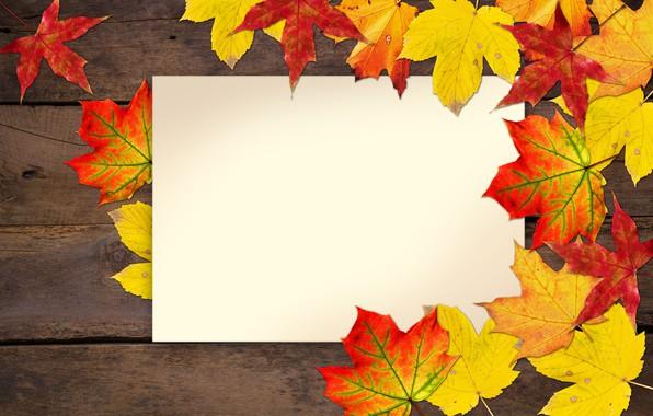 Картинка осень, листья, открытка, заготовка