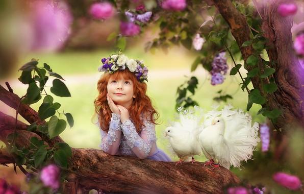 Картинка голуби, девочка, рыжая, венок