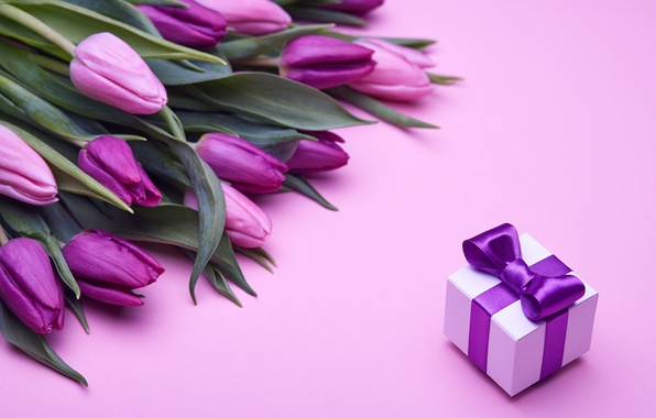 Картинка букет, тюльпаны, love, розовые, бант, fresh, pink, flowers, romantic, tulips, gift, purple