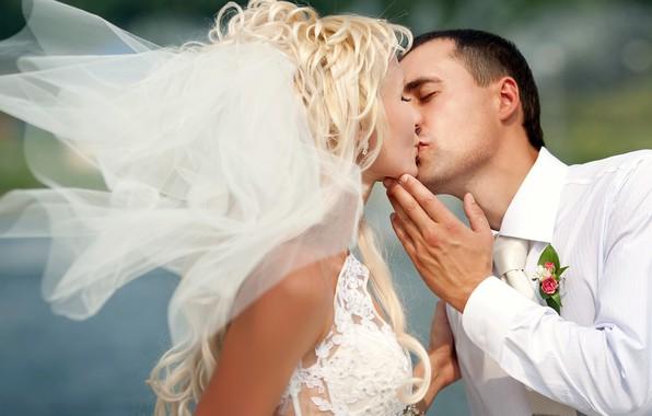 Картинка девушка, любовь, праздник, поцелуй, платье, пара, мужчина, невеста, фата, свадьба