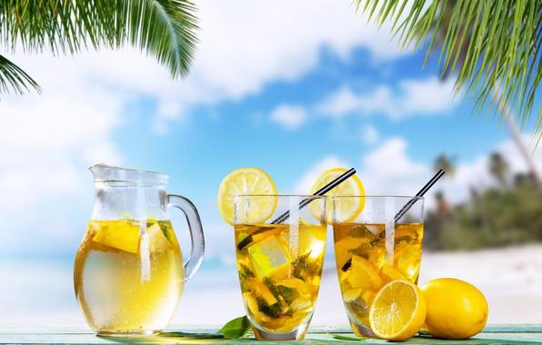Картинка лед, море, лето, пальмы, лимон, лимонад