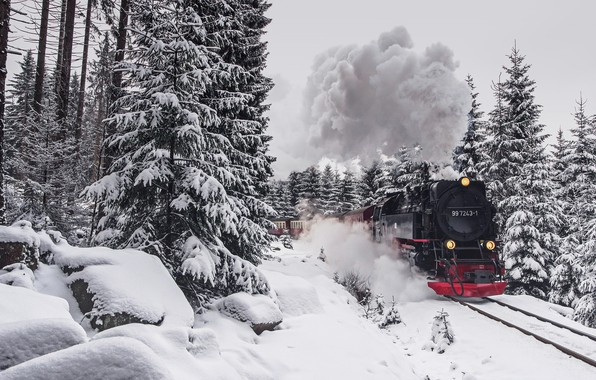 Фото обои зима, лес, поезд