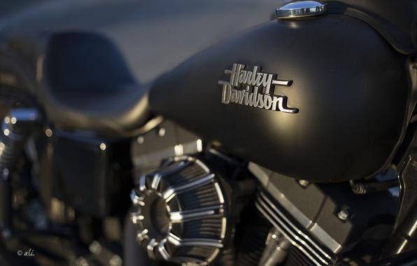Картинка фон, мотоцикл, Harley Davidson