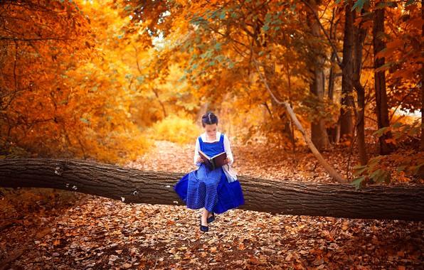 Картинка осень, листья, парк, дерево, настроение, девочка, книга