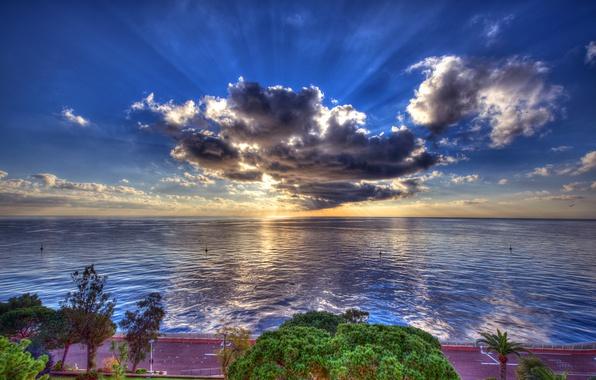 Картинка дорога, море, небо, солнце, облака, лучи, деревья, побережье, HDR, горизонт, набережная, Монако
