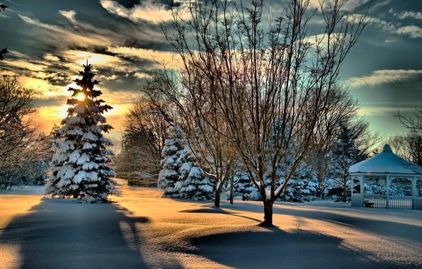 Картинка зима, лес, небо, солнце, облака, снег, деревья, парк, беседка