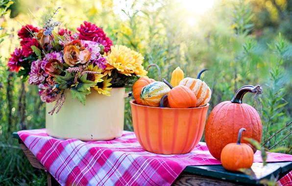 Картинка цветы, букет, тыква, дары осени