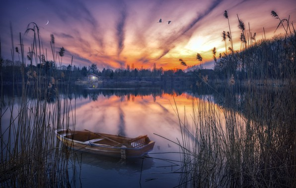 Картинка закат, природа, озеро, лодка, камыш