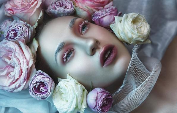 Картинка девушка, цветы, лицо, стиль, розы, макияж, бутоны, Катерина Клио