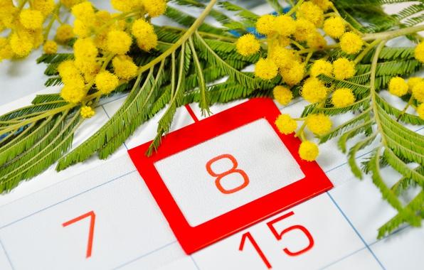 Картинка желтые, красные, календарь, 8 марта, цветки, числа, дата, мимоза, женский день
