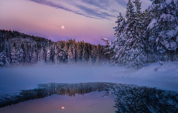 Фото обои зима, лес, снег, природа, озеро, луна, вечер, дымка