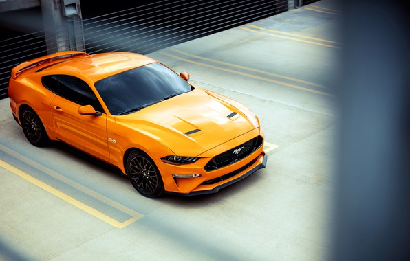 Картинка Ford, 2018, Mustang GT, Fastback Sports