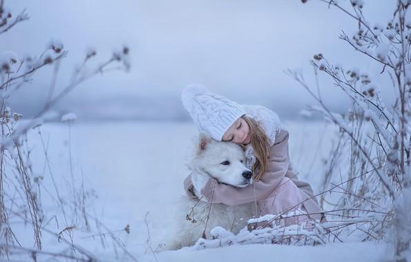 Картинка зима, настроение, собака, дружба, девочка, друзья, обнимашки, Самоед