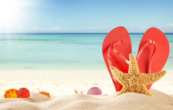 Картинка песок, море, пляж, лето, солнце, ракушки, summer, beach, каникулы, sand, сланцы, vacation, starfish, seashells
