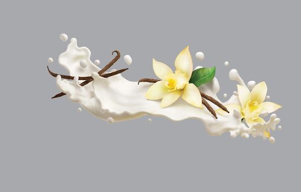 Картинка минимализм, сливки, арт, ваниль, AJ Jefferies, Philadelphia VIVA Protein Smoothies