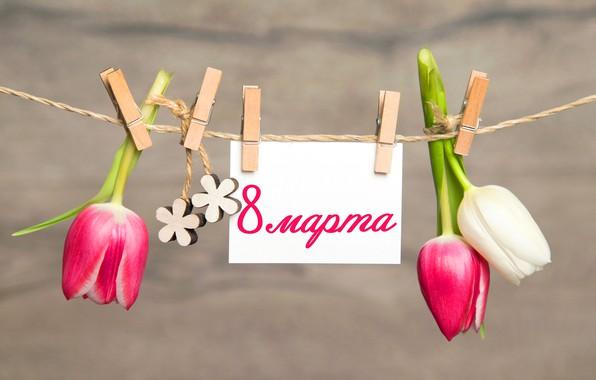 Картинка цветы, тюльпаны, 8 марта, прищепки, pink, flowers, romantic, tulips, открытка, spring