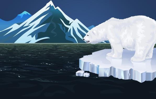 Картинка Море, Минимализм, Горы, Белый, Медведь, Фон, Полярный медведь, Белый Медведь, Льдина