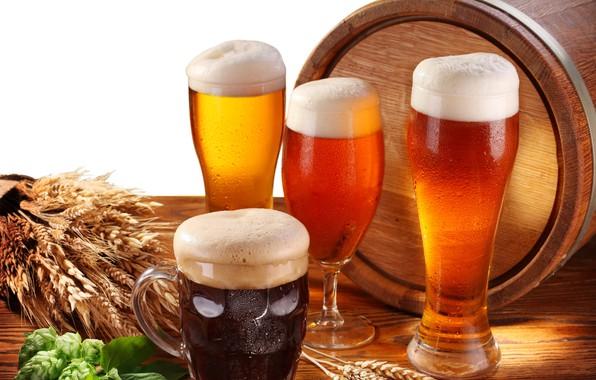 Картинка пена, стол, бокал, пиво, кружка, белый фон, стаканы, колосья, бочка, хмель