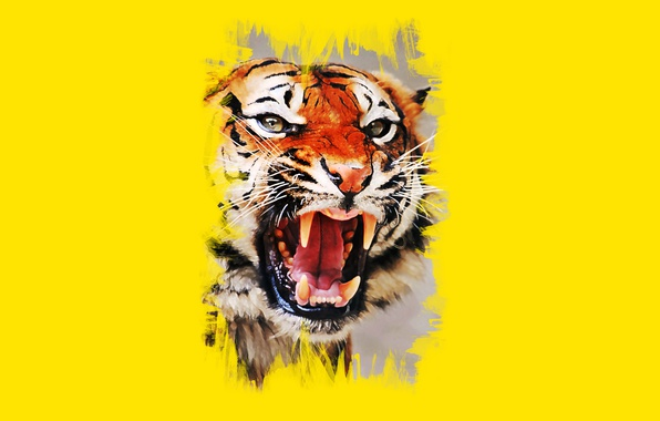 Картинка морда, тигр, пасть, клыки, оскал, art