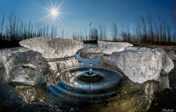 Картинка зима, вода, солнце, капли, макро, лёд, всплеск