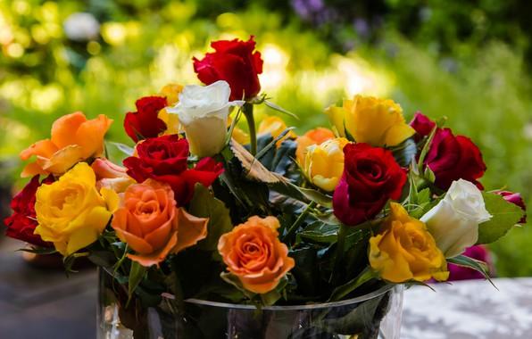 Картинка цветы, розы, букет, ведро