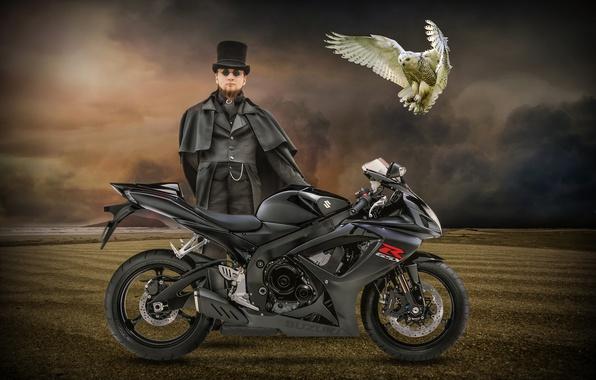 Картинка сова, птица, мотоцикл, мужчина, Suzuki