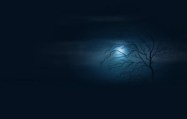 Картинка пустота, ночь, туман, сумрак, одинокое дерево, ливень, полная луна, в темноте