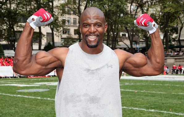 Картинка взгляд, улыбка, лысый, актер, перчатки, muscle, мышцы, pose, Terry Crews, Терри Крюс, бодибилдер, biceps, bodybuilder