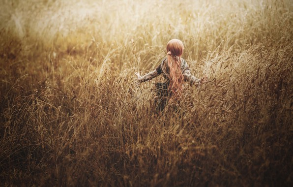 Картинка поле, трава, кукла