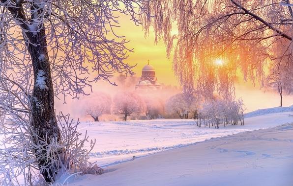 Картинка зима, иней, солнце, свет, снег, деревья, природа, храм, Россия