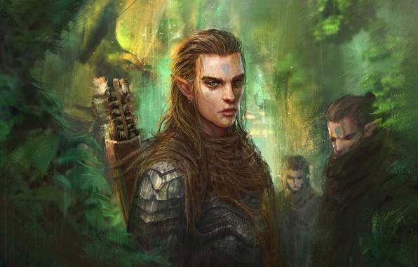 https://img4.goodfon.ru/wallpaper/big/1/2c/trung-tin-shinji-elf-prince-art-fentezi-elf-les.jpg