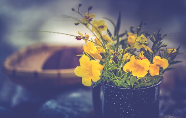 Картинка цветы, кружка, букетик