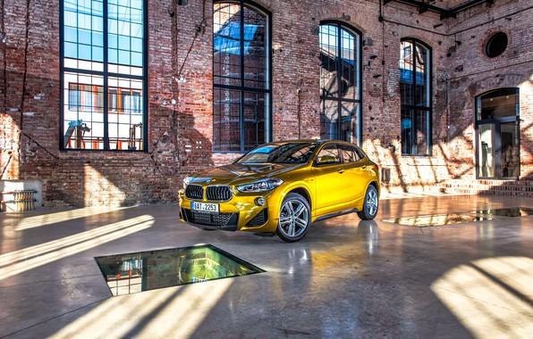 Картинка бмв, BMW, золотой, кроссовер, SUV, F39