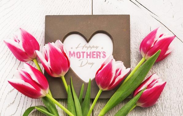 Картинка цветы, сердце, тюльпаны, red, love, heart, wood, romantic, tulips, spring, красные тюльпаны, mother's day
