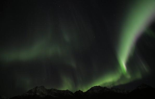 Картинка green, sky, night, norway, aurora borealis, northenlights