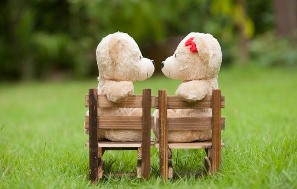 Картинка любовь, игрушка, медведь, пара, love, двое, bear, park, kiss, romantic, teddy, cute