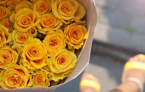Картинка розы, букет, желтые, бутоны