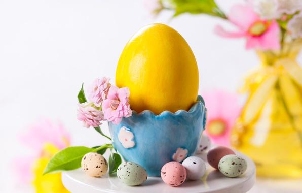 Картинка цветок, праздник, яйца, весна, пасха, Easter, egg