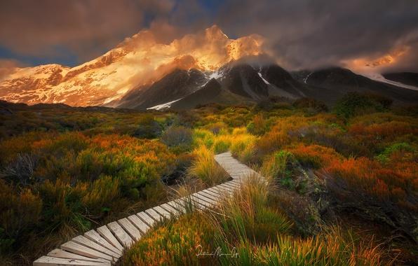Картинка трава, облака, горы, гора, тропа, кусты