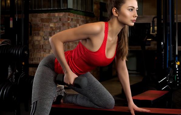 Картинка девушка, поза, макияж, майка, фигура, стройная, лавочка, прическа, шатенка, красивая, фитнес, спортзал, тренировка, тренажеры, лосины, …