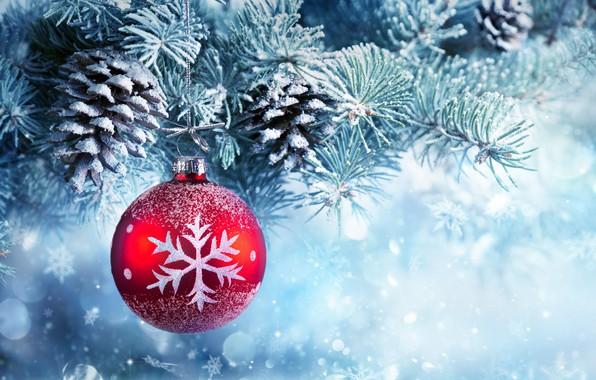 Картинка снег, украшения, шары, елка, Новый Год, Рождество, Christmas, balls, шишки, snow, Merry Christmas, Xmas, decoration