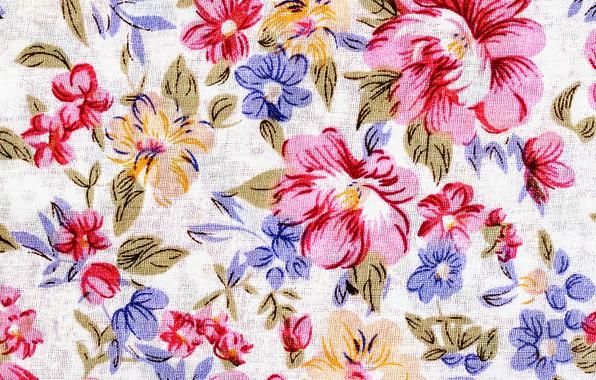 Картинка цветы, фон, текстура, texture, Vintage, Background, floral