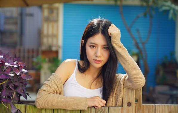 Картинка лето, взгляд, забор, азиатка, милашка