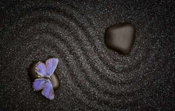 Картинка песок, узор, бабочка, камень, текстура