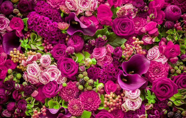 Картинка цветы, розы, розовые, бутоны, pink, flowers, beautiful, romantic, purple, roses