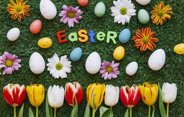 Картинка Цветы, Тюльпаны, Пасха, Яйца, Травка, Праздник, Хризантемы